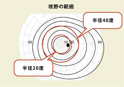 視野の範囲 (ゴールドマン視野計で、Ⅲ/4eの視標を用いて測定したもの)